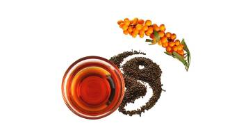 The Biggest Difference and Efficacy of Sea Buckthorn Seed Oil and Sea Buckthorn Fruit Oil